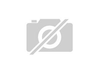 Teuto Kaninchen